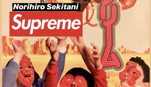 【Supreme】2019SS Week10に発売が噂されるアイテム一覧 リーク情報など