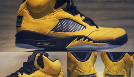 【Nike】Air Jordan 5 Retro SP