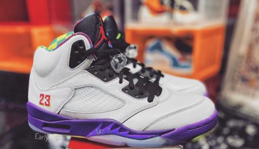 【Nike】Air Jordan 5 Retro SE