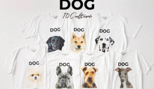 【DOG MAGAZINE × 10C】コラボTシャツ7種が国内7月24日に発売予定【先行予約受付中】
